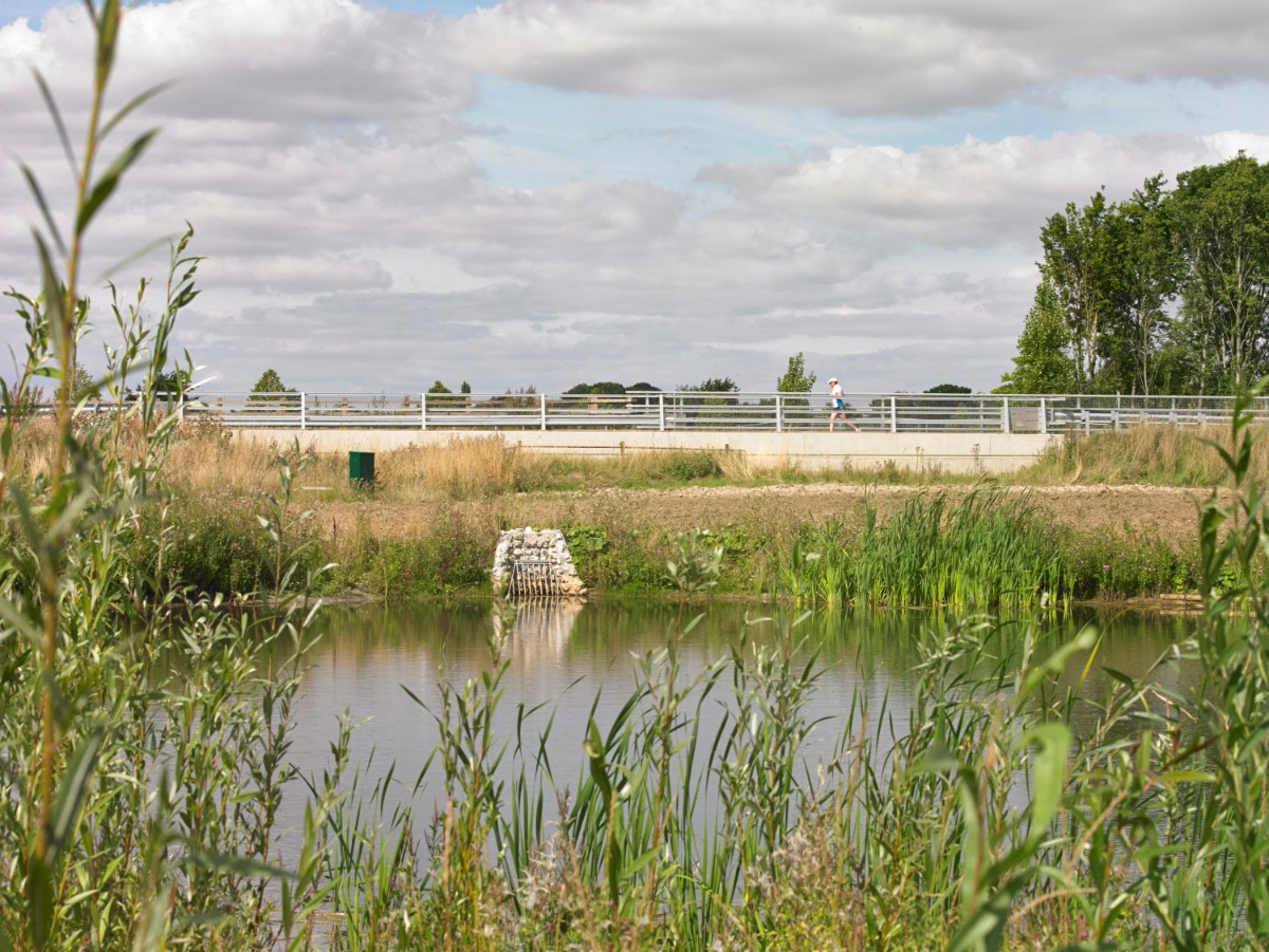 SuDS Pond Great Kneighton 2